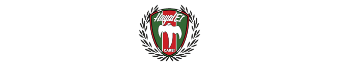 Hayalet Ultras
