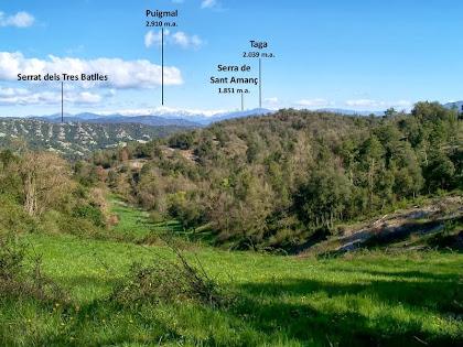 El Puigmal, el Taga i la Serra de Sant Amanç des de sota mateix de la Casa Nova de la Coma o d'Orís
