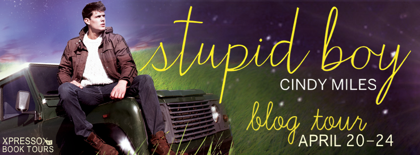 Blog Tour: Stupid Boy by Cindy Miles