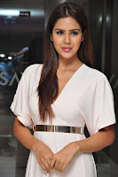 Sonam Bajwa Stills (35).jpg