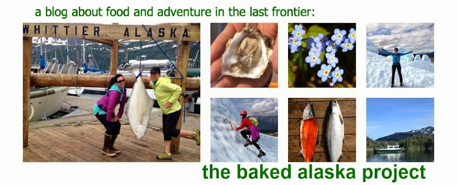 The Baked Alaska Project