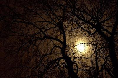 صور سطح القمر , القمر صور