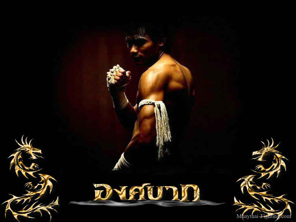 http://3.bp.blogspot.com/-02TxJ8a3B3k/T7Q63lP5wdI/AAAAAAAAAB4/ZRzyDCippUY/s1600/Muay-Thai-Wallpapers-Tony-Jaa-16.jpg