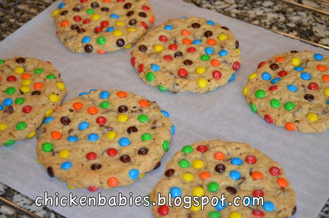 mini m m cookies rainbow m m cookies these thick and chewy m m i had ...