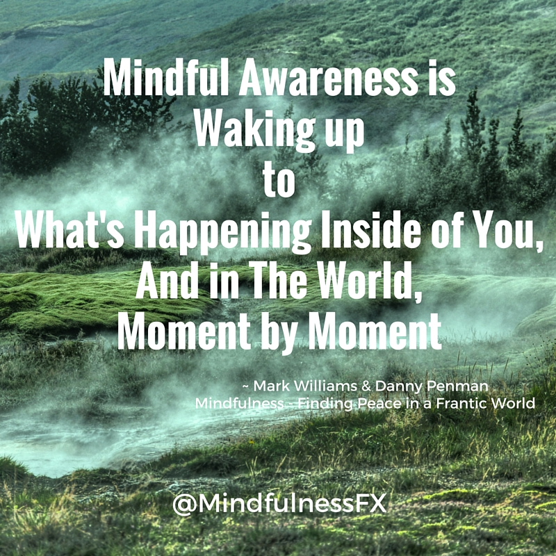 mindfulness quote of the day mindful awareness is