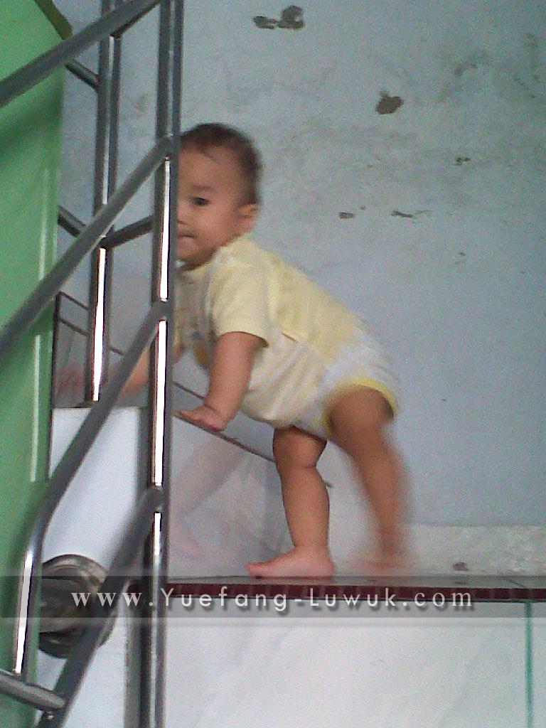 my_little_explorer_hadi_naik_tangga