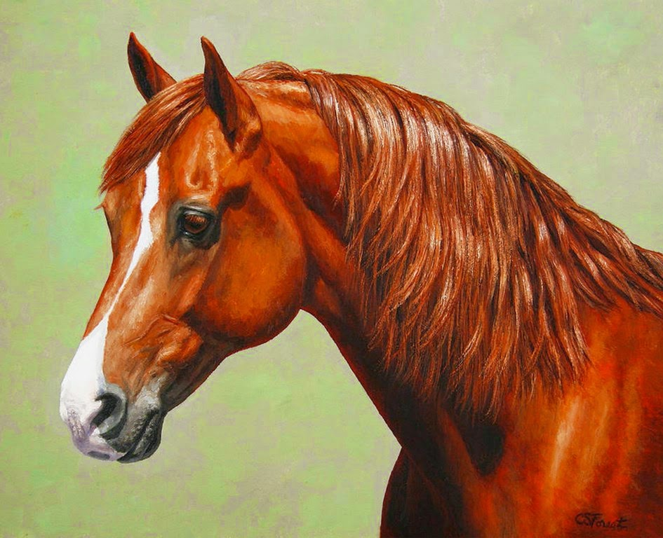 fotos-y-pinturas-de-caballos