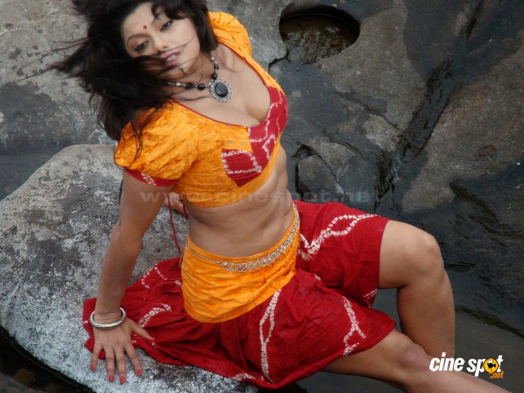 Sexy Hot Swathi Varma in Saree Download Free