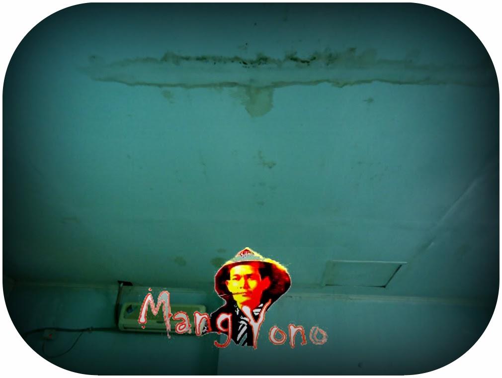 Cara mengecat Plafon Rumah yang bernoda karena terkena bocoran air hujan atau lembab