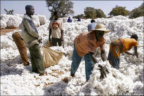Cotton farmers in the developing world are exploited in the global marketplace