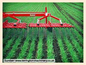 Mekanisasi Pertanian Saat Ini Masih Terganjal Masalah Sosial Info