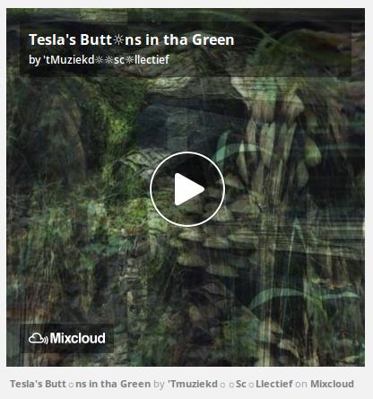 http://www.mixcloud.com/straatsalaat/teslas-buttns-in-tha-green/