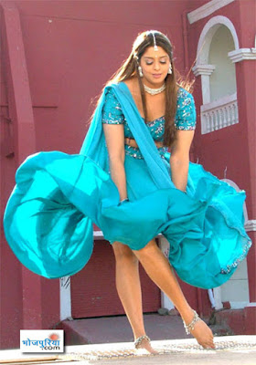 Actress Hot Scenes - Bollywood | Kollywood | Hollywood |