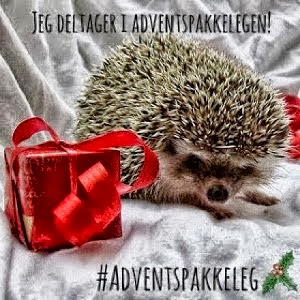 Adventspakke  leg