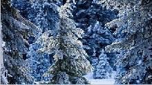 Sfondo invernale-11
