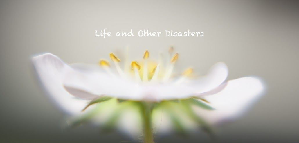 Life and Other Disasters