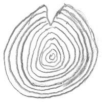 Tekening vrieslijst in hout