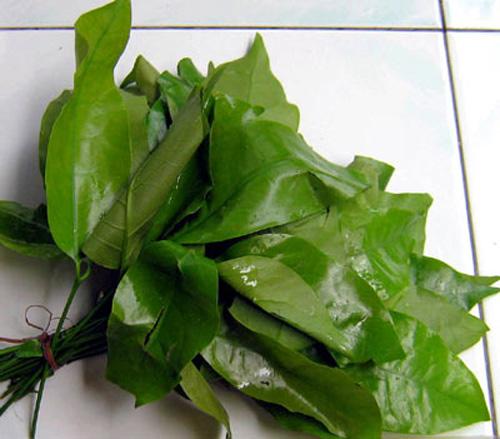 Món ngon Gia Lai: Canh lá bép - Hương sắc đại ngàn