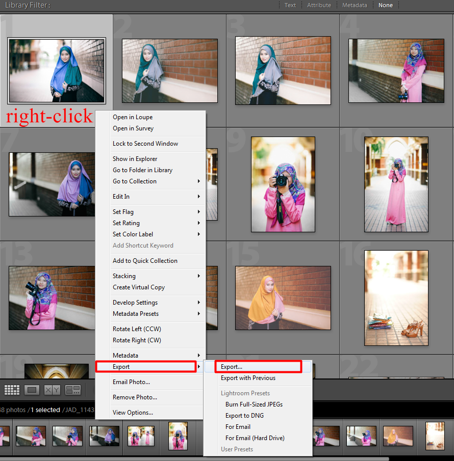 how to add a watermark in lightroom 4