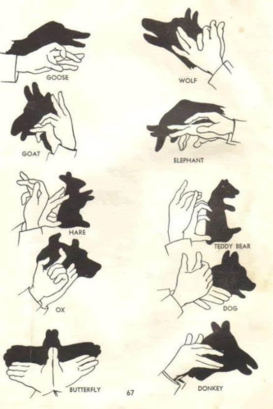 bentuk bayangan dari tangan, seni bayangan dari tangan, bayangan binatang dari tangan, bayangan hewan dengan tangan, buat bayangan dari tangan, bayangan hewan dari tangan, cara bermain bayangan dengan tangan, foto bayangan tangan,