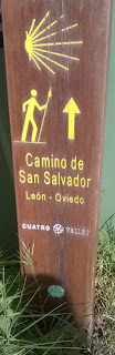 Camino de San Salvador