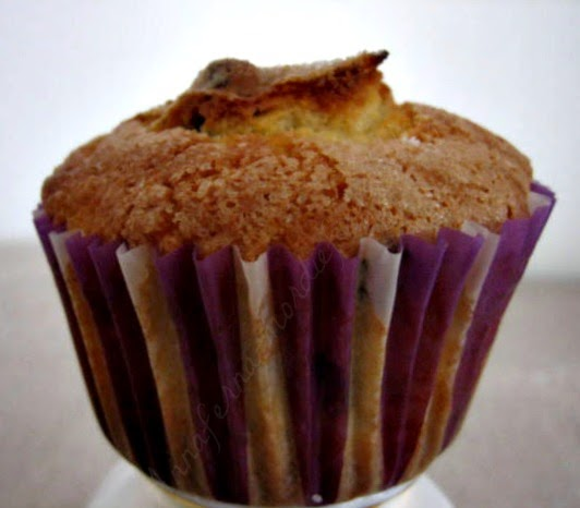 muffin al mirtillo ( blueberry muffins)