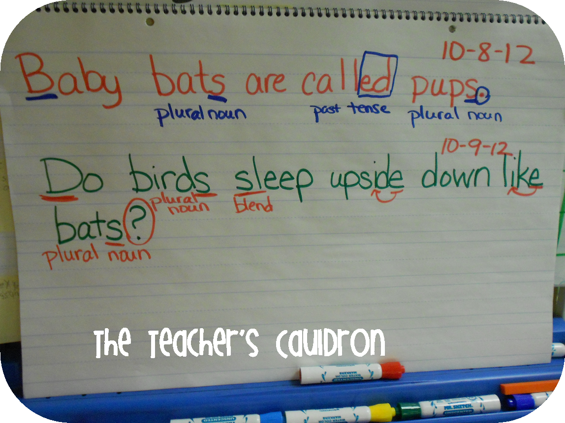 Bats, Sentence Imitation, and Ode to my bloggy-girls! - Teacher by ...