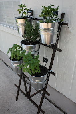 Hanging Potted Herb Garden