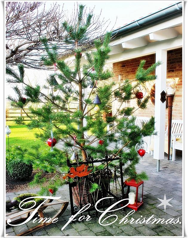 innenansichten der 1 weihnachtsbaum ist da. Black Bedroom Furniture Sets. Home Design Ideas