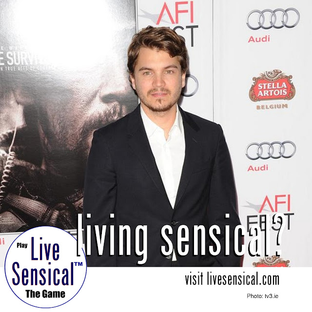 (Not how to livesensical.com) Emile Hirsch will face 15 days in prison after pleading guilty to assaulting studio executive Daniele Bernfeld at Sundance Film Festival. The 'Speed Racer' actor pleaded guilty and has also been ordered to pay a $4,750 fine and complete 50 hours of community service.