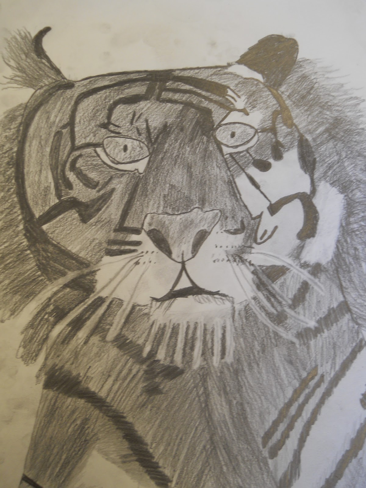creative expressions wild animal drawings in pencil and