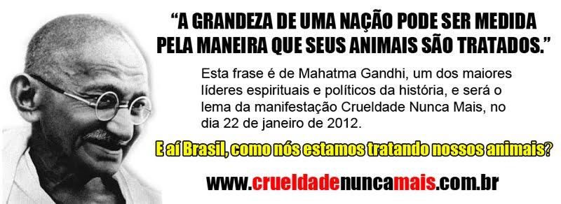 CRUELDADE NUNCA MAIS - MANFESTAÇÃO -  VAMOS PARTICIPAR!!!