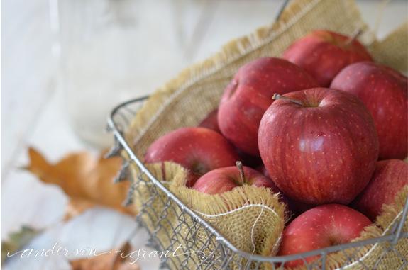 Basket full of apples for fall | www.andersonandgrant.com