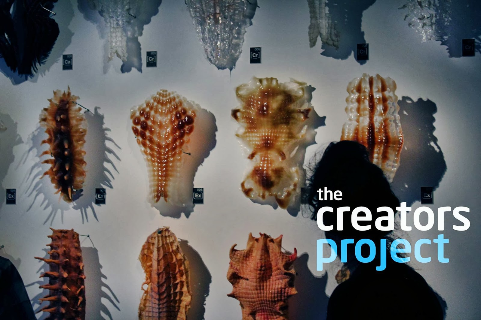 the creators project The most prestigious and innovative galleries throughout latin america come to the us to break down walls.