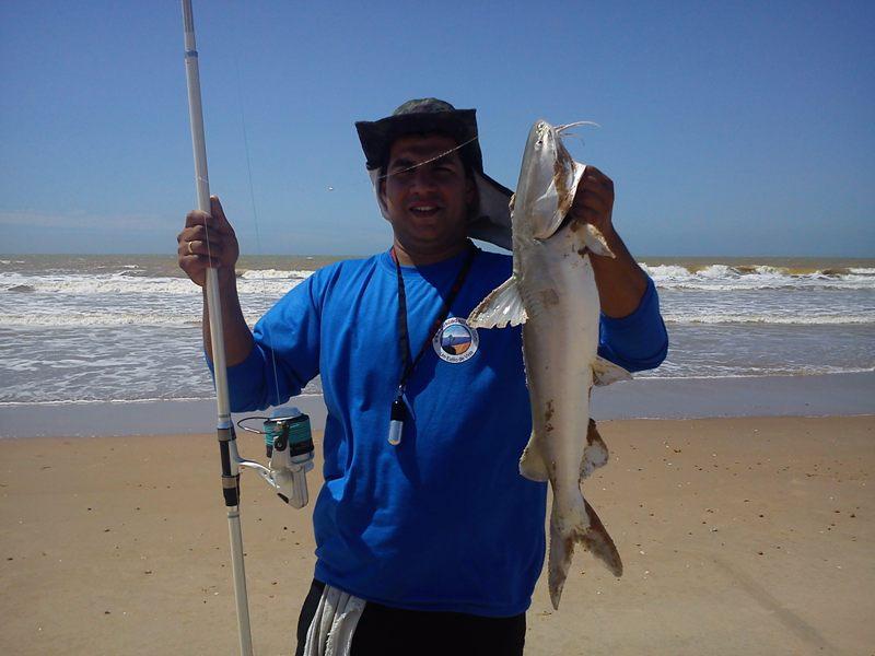 Peixe - Bagre DSC00284