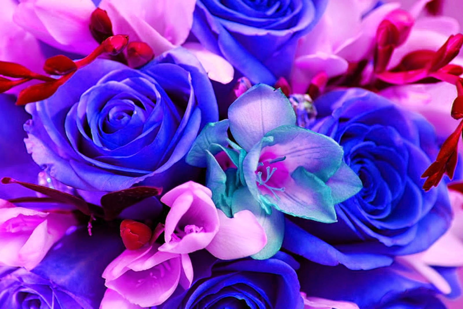 Doodlecraft: Colorful Bouquet of Flowers Wallpaper Background!