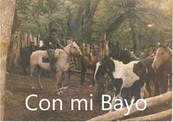 Con mi Bayo Canario