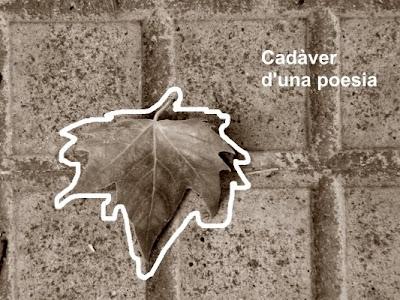 Cadàver d'una poesia (Mariano Rios)