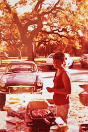 Piper and I with my MGB on a picnic before our marriage (I think!)