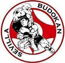 -BUDOKAN SEVILLA- ACADEMIA ARTES MARCIALES
