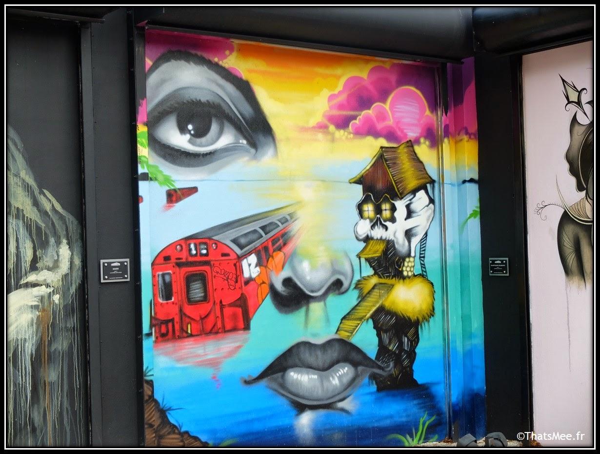 Visage femme street art Wynwood doors art district, Miami art Basel