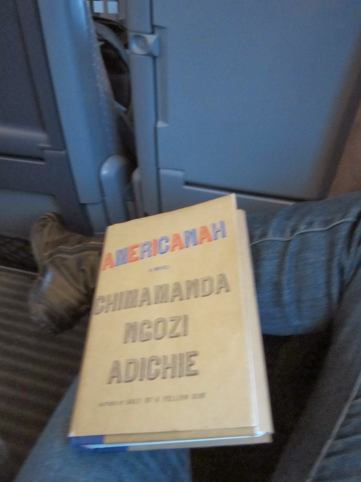 Americanah A Novel By Chimamanda Ngozi Adichie