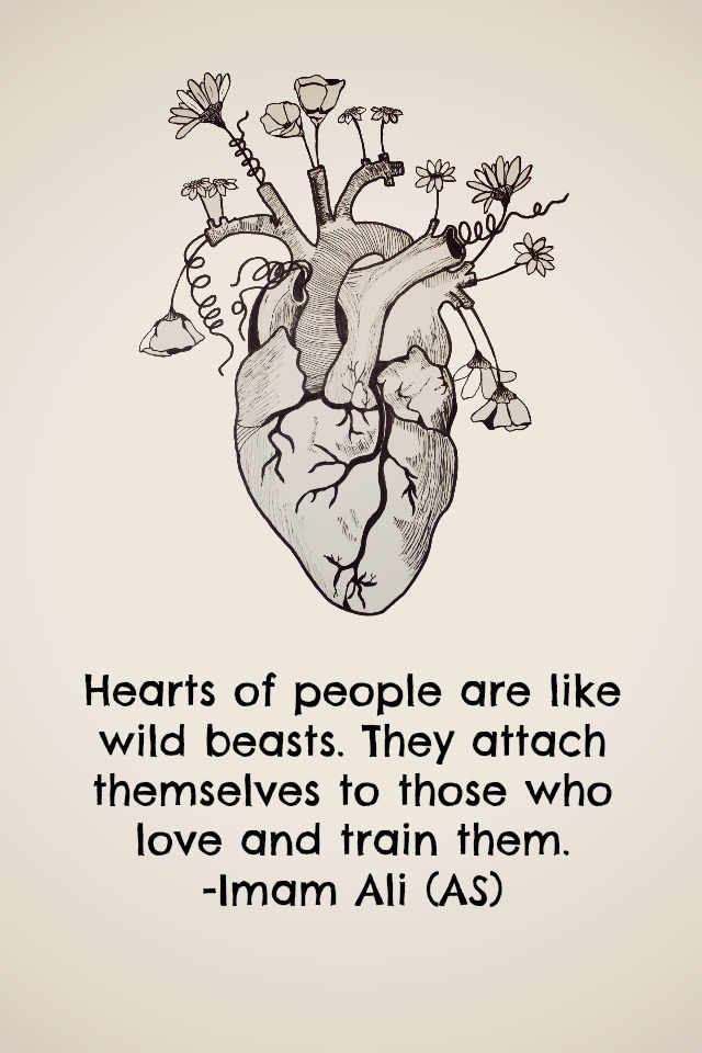Heart of people are like wild beasts. They attach themselves to those who love and train them.