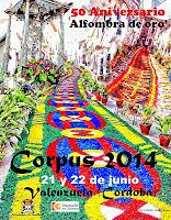 Valenzuela - Fiesta del Corpus 2014
