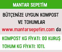 MANTAR SEPETİM