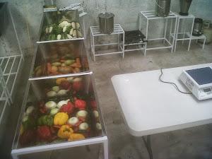 MÉXICO: Fábrica Sendo Instalada.