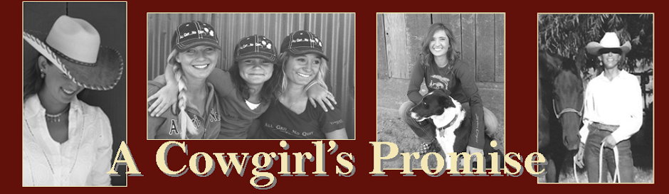 A Cowgirl's Promise