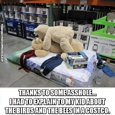 Explain The Birds And The Bees To My Kid At Costco Funny Teddy Bears Booze One Night Stand