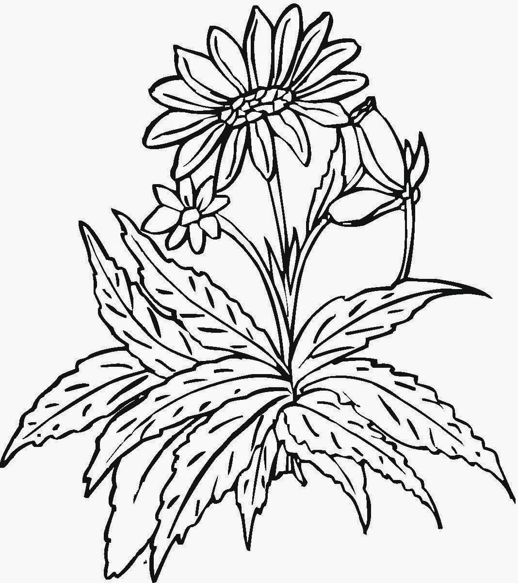 colorear ramo de flores