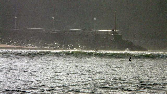 plentzia surf 07